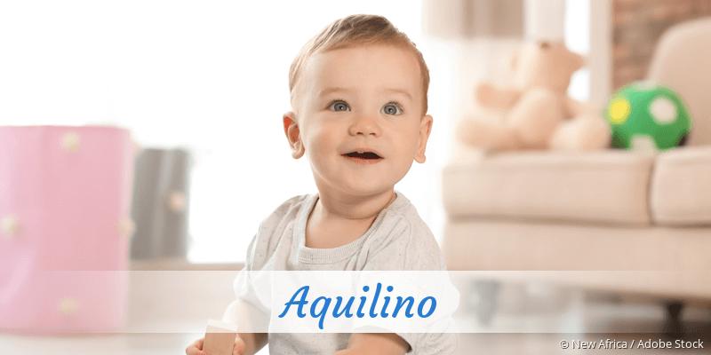 Name Aquilino als Bild
