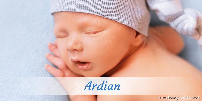 Name Ardian als Bild