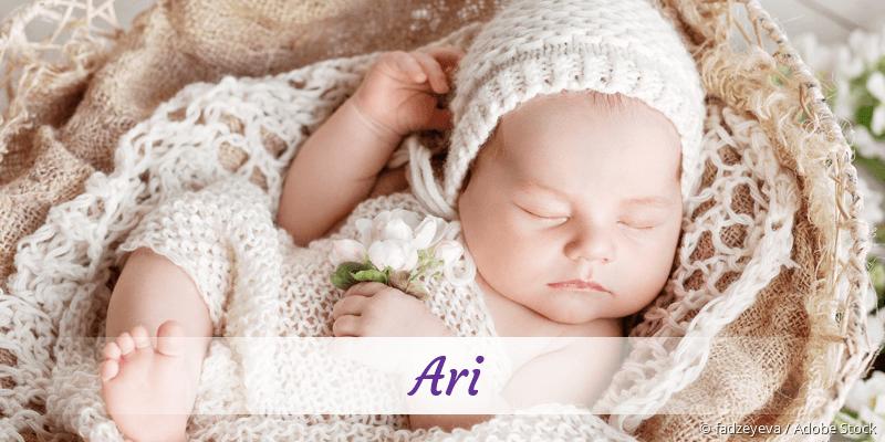 Name Ari als Bild