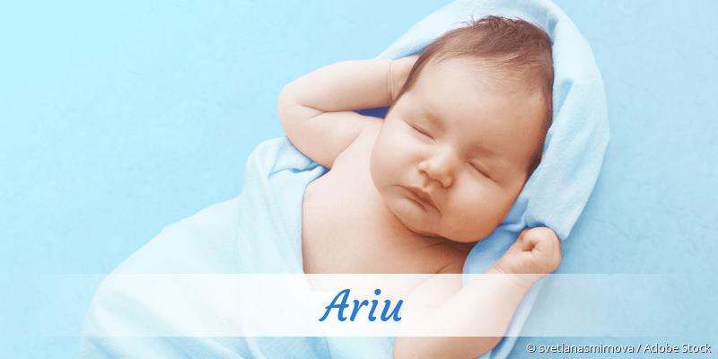 Name Ariu als Bild