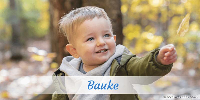 Name Bauke als Bild