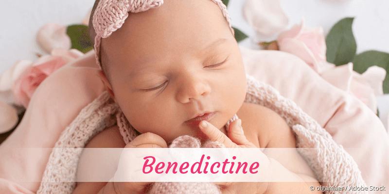 Name Benedictine als Bild