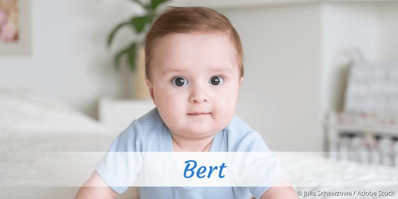 Name Bert als Bild