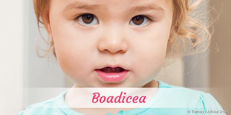Name Boadicea als Bild