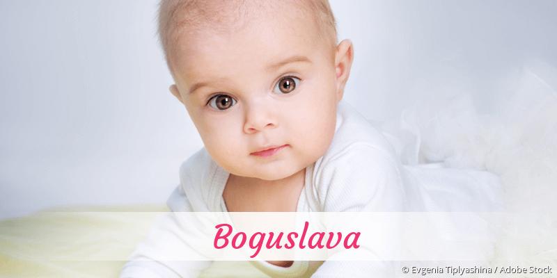 Name Boguslava als Bild
