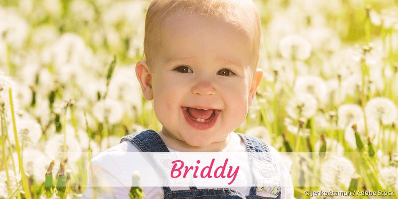 Name Briddy als Bild