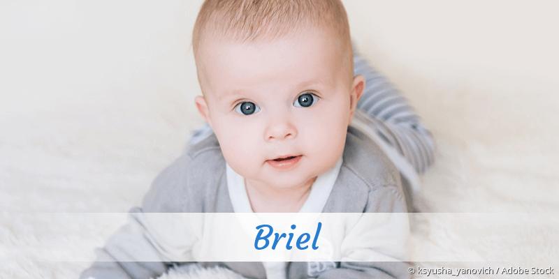 Name Briel als Bild