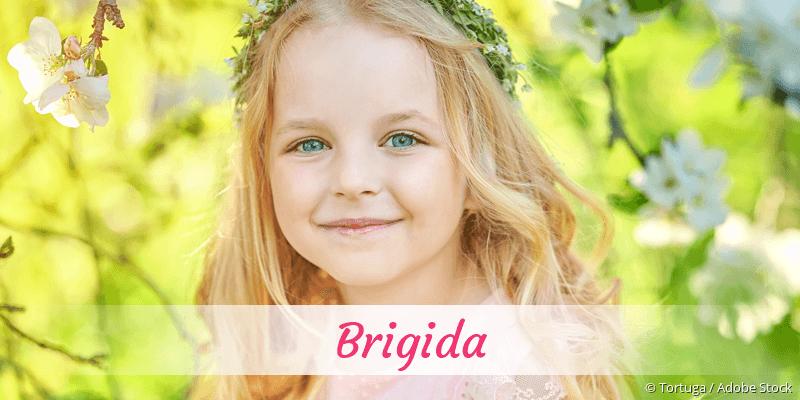 Name Brigida als Bild