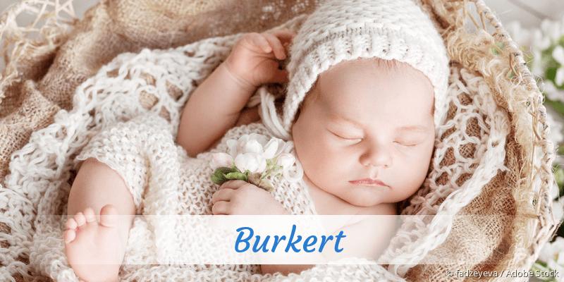 Name Burkert als Bild
