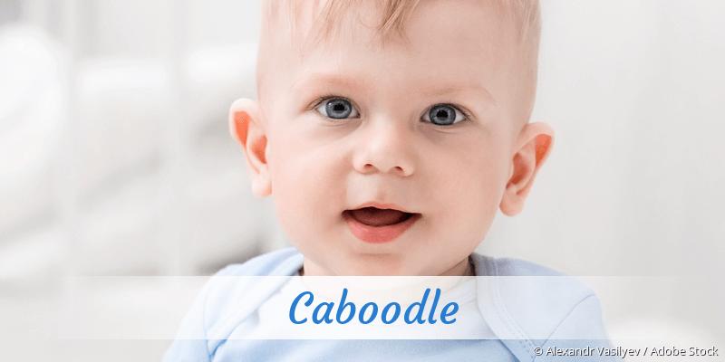 Name Caboodle als Bild