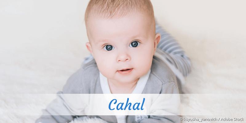 Name Cahal als Bild