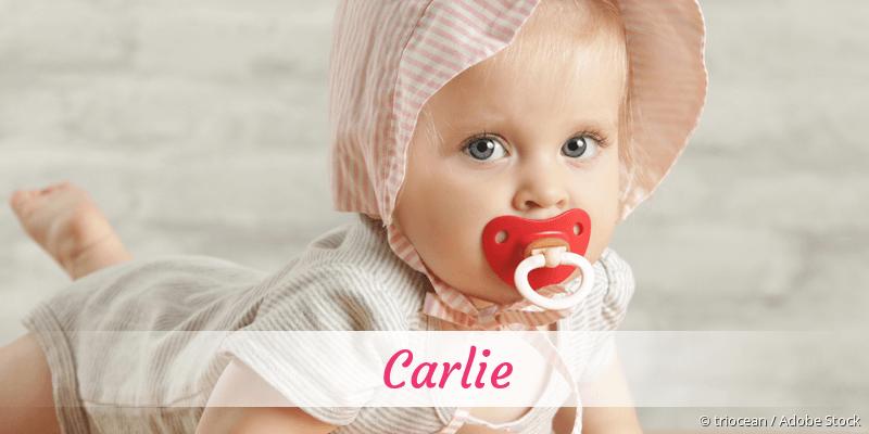 Name Carlie als Bild