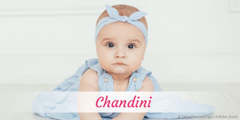 Name Chandini als Bild