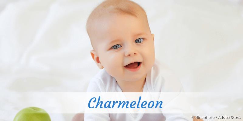 Name Charmeleon als Bild