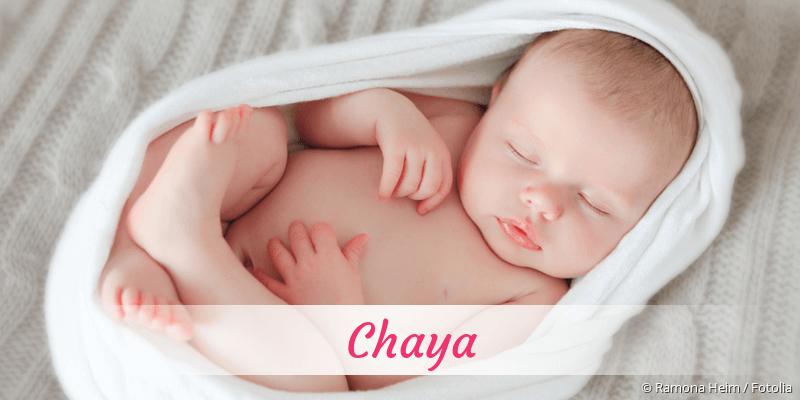 Name Chaya als Bild
