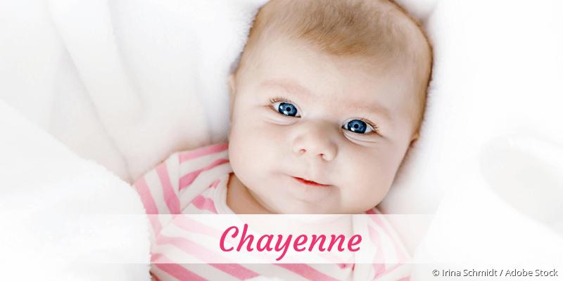 Name Chayenne als Bild