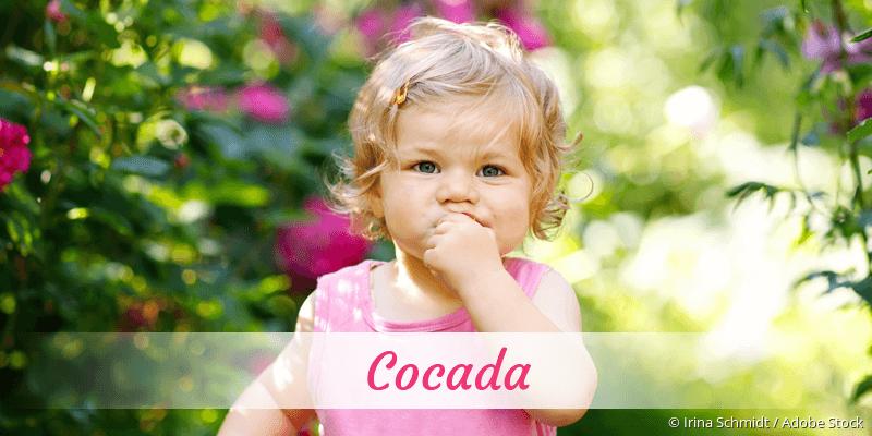 Name Cocada als Bild