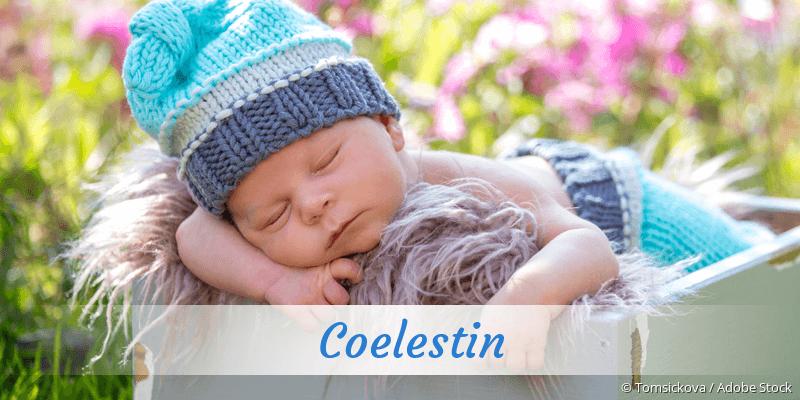 Name Coelestin als Bild