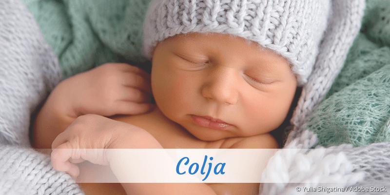 Name Colja als Bild
