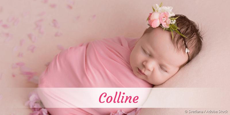 Name Colline als Bild
