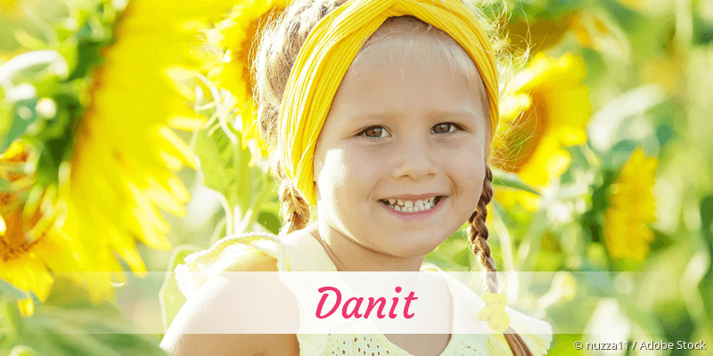 Name Danit als Bild