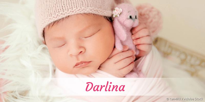 Name Darlina als Bild