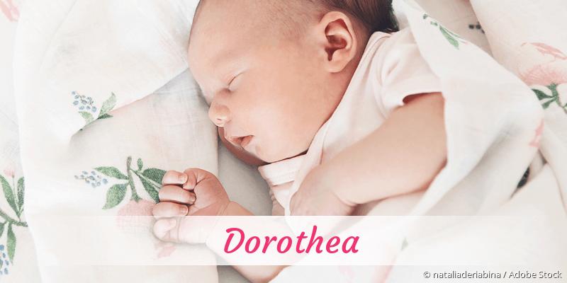 Name Dorothea als Bild