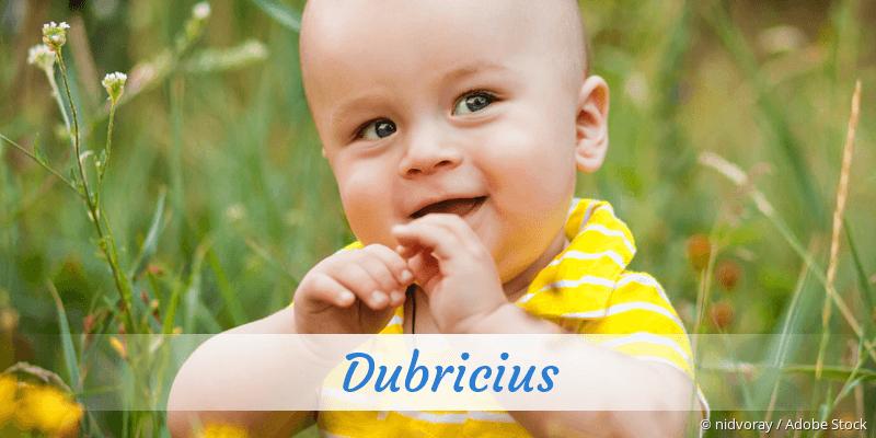 Name Dubricius als Bild