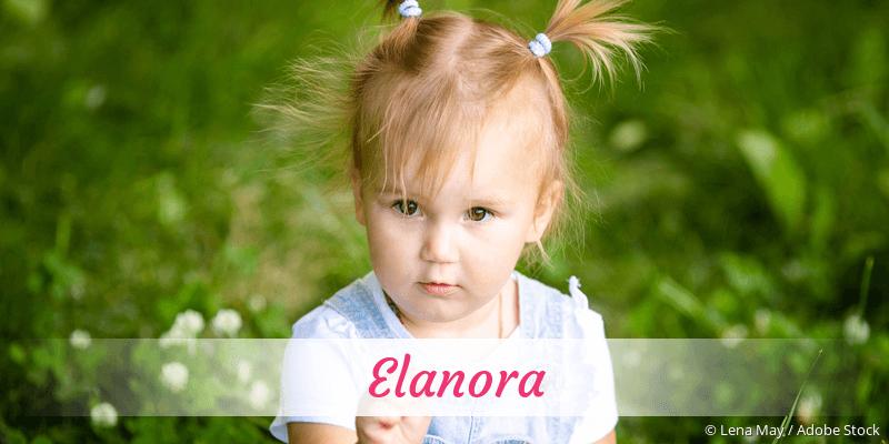 Name Elanora als Bild