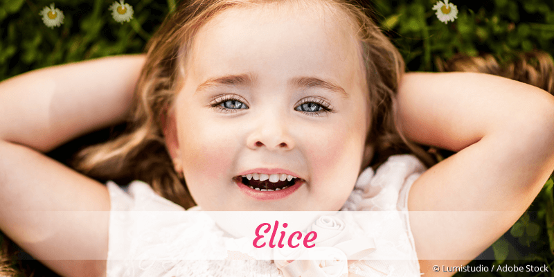Name Elice als Bild