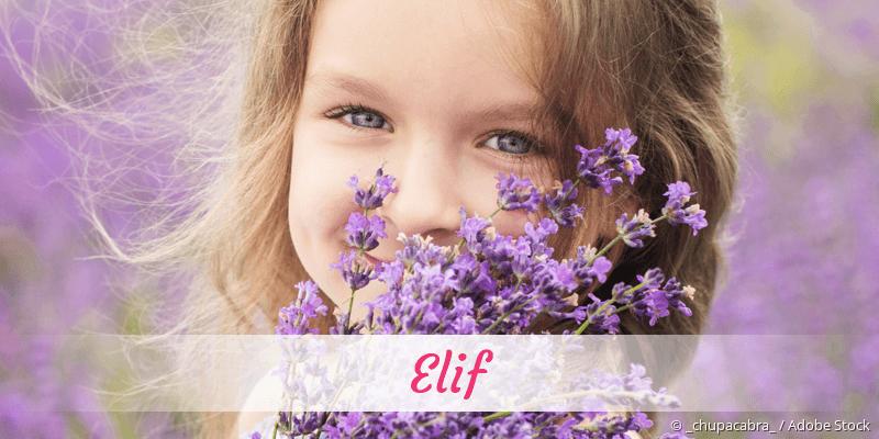 Name Elif als Bild