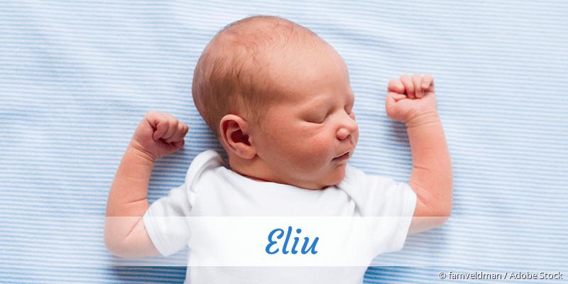 Name Eliu als Bild