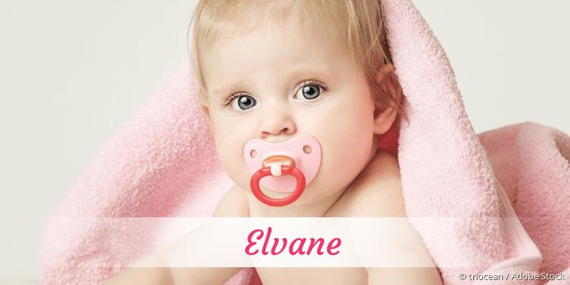 Name Elvane als Bild