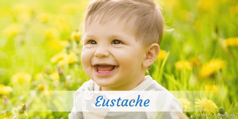Name Eustache als Bild