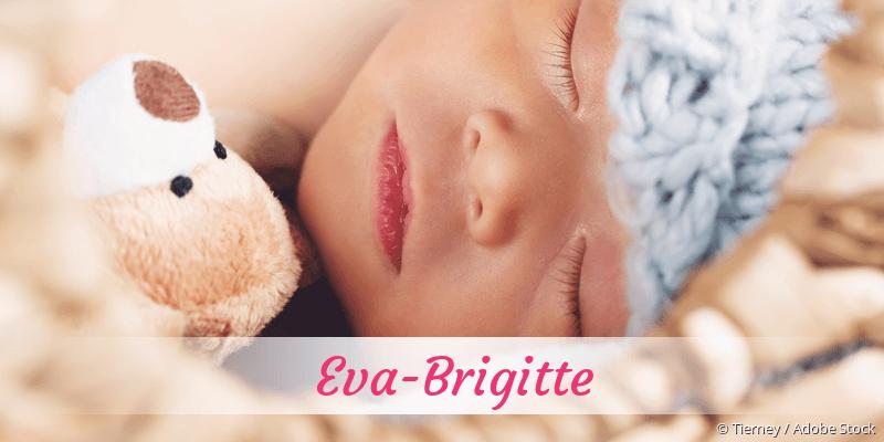 Name Eva-Brigitte als Bild