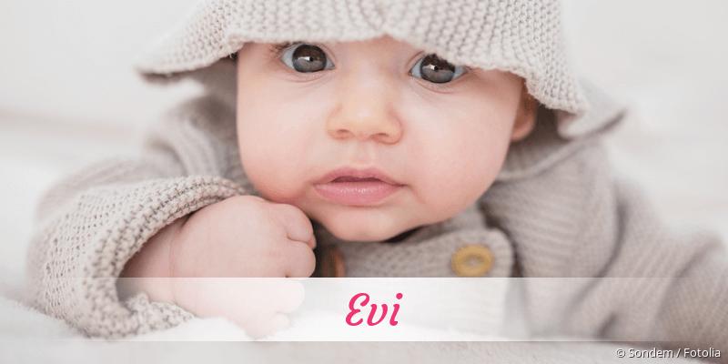Name Evi als Bild