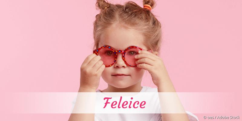 Name Feleice als Bild