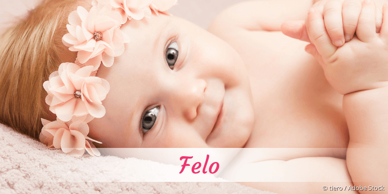 Name Felo als Bild