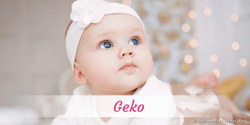 Name Geko als Bild