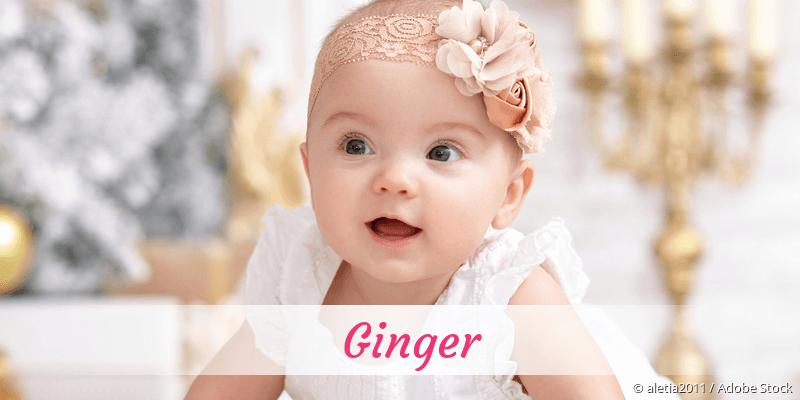 Name Ginger als Bild