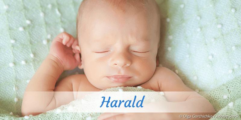 Name Harald als Bild