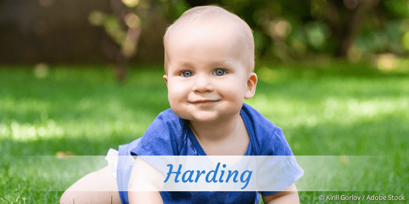 Name Harding als Bild