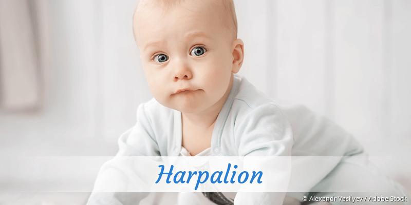 Name Harpalion als Bild