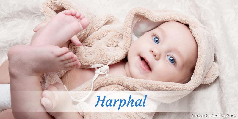 Name Harphal als Bild