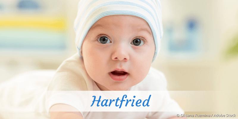 Name Hartfried als Bild