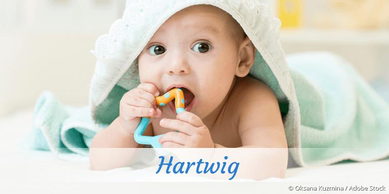Name Hartwig als Bild