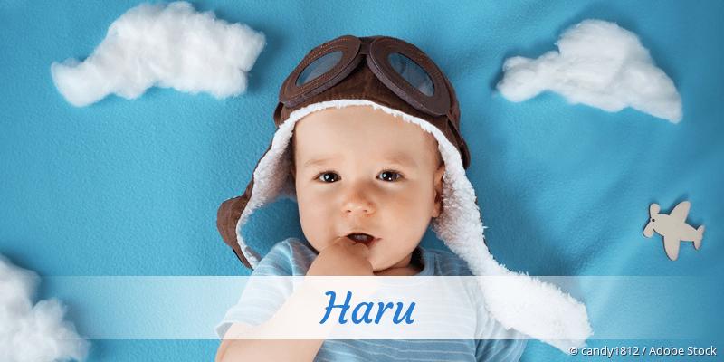 Name Haru als Bild