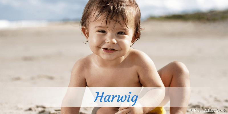 Name Harwig als Bild