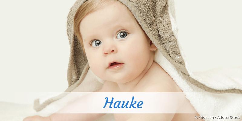 Name Hauke als Bild