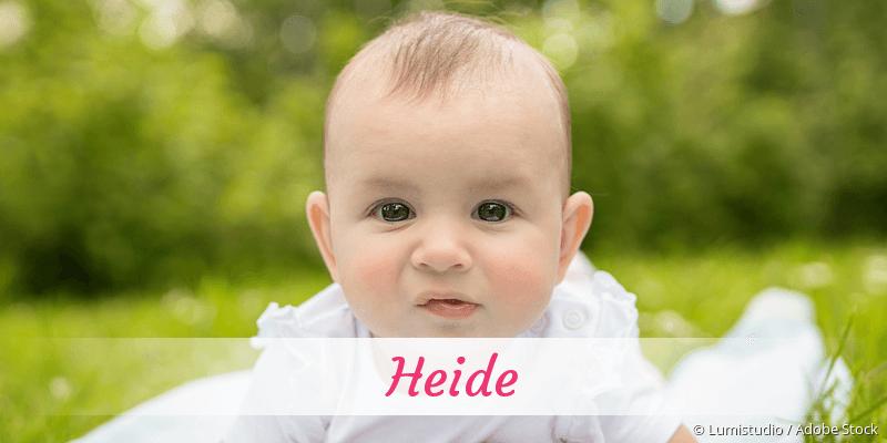Name Heide als Bild